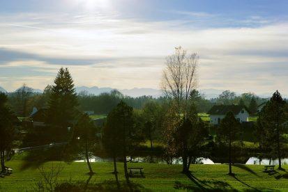 Ausblick auf den Reindlschmiede-Teich